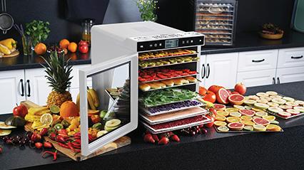 Электросушилка для овощей и фруктов RAWMID Modern RMD-10